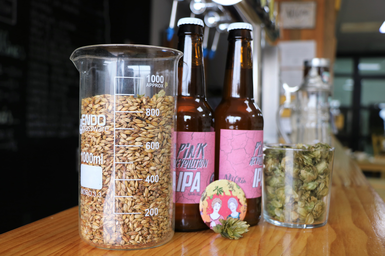 valencia-blog-bier-pink-revolution